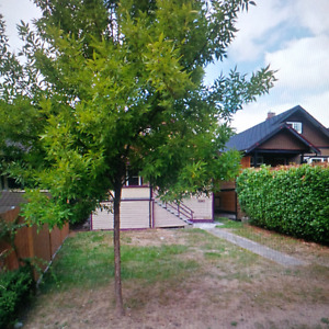2 bedroom basement trout lake area with laundry