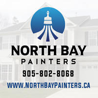 PROFESSIONAL PAINTER/PAINTING