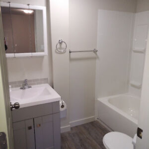 Bachelor suite at 2405 Pine Street