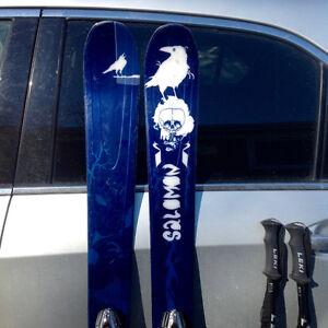 Salomon Twin Tip Skis- Salomon Bindings - Poles - plus Ski bag