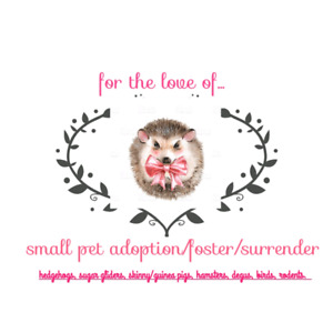 For the love of in relation to the LITTLE BEAR FOUNDATION FUND