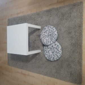 Rug / small coffee table / small cushions