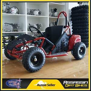 NEW Assassin USA 1000 Watt BRUSHLESS 48V KIDS Buggie Go Kart ATV Taren Point Sutherland Area Preview