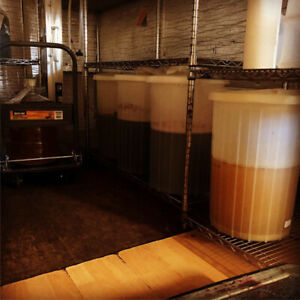 Northern BC For Sale. Brew on premise business