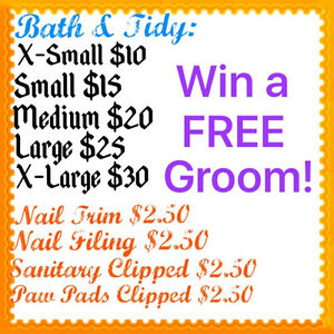 Cheap bath/tidy! $2.50 nail trims!
