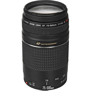 Lentille Zoom Canon EF 75-300mm F4-5.6 USM T3i T5i T6i 60D 70D