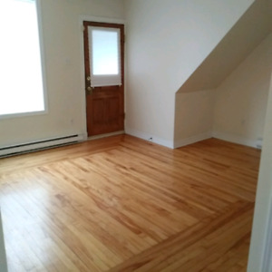 Spacious 2 Bedroom Apartment-West Side