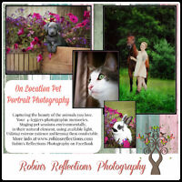 On Location Pet Photography