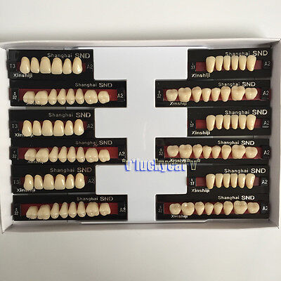 Dental Acrylic Resin Teeth Two-layer A2 Full Mouth 3sets T3 L37 S32 Bestsell