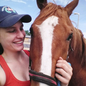 Quirky TB Gelding for Partboard - Benny