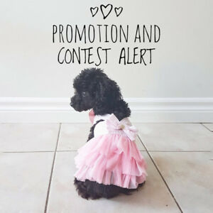 Grooming - FREE add-ons for August + Contest !!