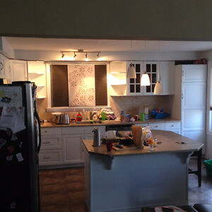 Professionally re-spray cabinets HAST