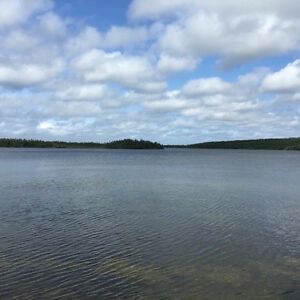1 Acre Waterfront Cleared Building Lot in Bellevue! St. John's Newfoundland image 3