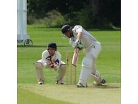 Weybridge Vandals Cricket Club Looking for New Players