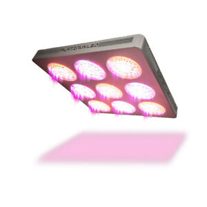 LED Grow Lights - Grow Your Own Cannabis this Year!