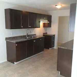 Beautiful Newly Renovated 3 Bedroom suite on Gillett!!!!