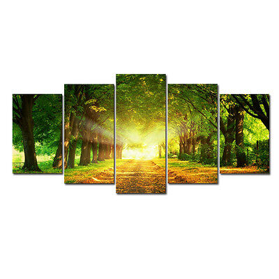New Picture Photo Print on Canvas Home Wall Decor Landscape Green Forest Framed