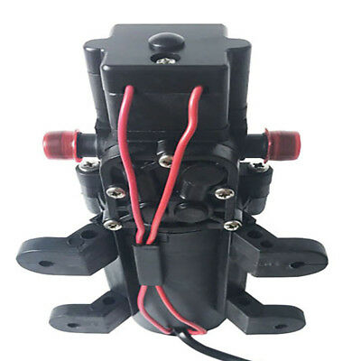 12v Diaphragm Self Priming Agricultural Electric Spray Pump