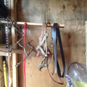 Various new and used tack and equipment