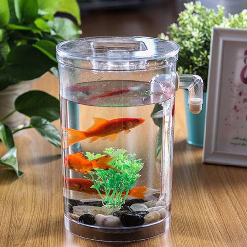 Creative Ecology Mini LED Fish Tank Luminous Glass Tank Aquarium Fish Tank 6