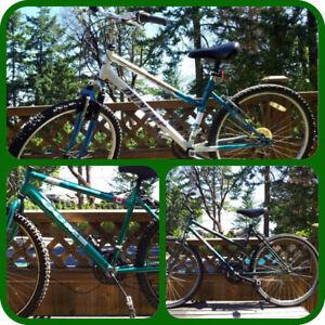 $120-$350. Quality Canadian & UK bikes, sold by Bike Mechanic.