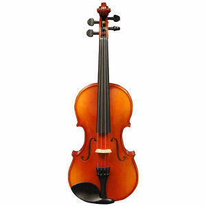 Looking for 1/4 size violin