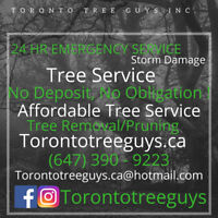 FullyInsured-Reviewed-TreeCareExperts-Reliable-Affordable-Honest