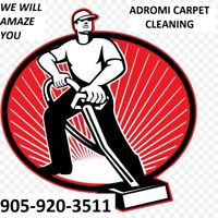 WE WILL AMAZE YOU WITH OUR CARPET CLEANING EXPERTISE CALL ADROMI