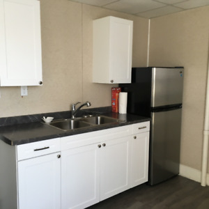 FT ERIE-NEWLY RENOVATED 2 BDRM UPPER APT AVAIL IMMEDIATELY