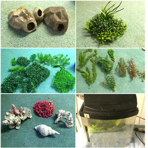 Fish Tanks, Heaters, Sand/Stone, and Accessories Windsor Region Ontario image 2