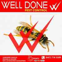 Well Done Pest Control Low Rates 1 Treatment Wasps Removal GTA