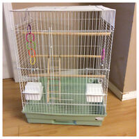 Green budgie comes with cage