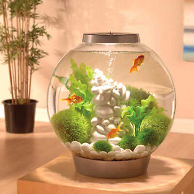 biOrb 16 Gallon Mega Aquarium Kit with Light, Silver