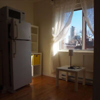 Sunny apartment with balcony 5 minutes from McGill