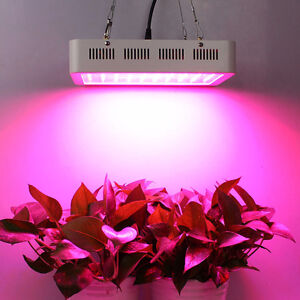 Brand New LED Grow Plant Light 300w / Indoor Hydroponic Lighting
