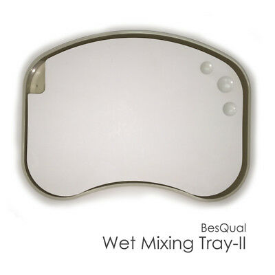 Wet Porcelain Mixing Tray Ii With Case Palette Size 9.0x6.0x0.55 Dental Lab