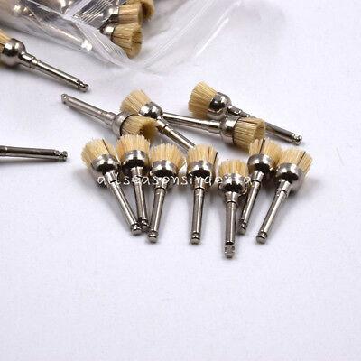50 Pcs Dental Prophy Polishing Brush Bowl Shape Brushes Bristles Latch Flat