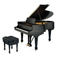 Beginner Piano Lessons in Wolseley/River Hights!