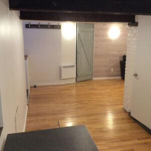 3bdrm fully renovated Plateau near Mcgill- May 1
