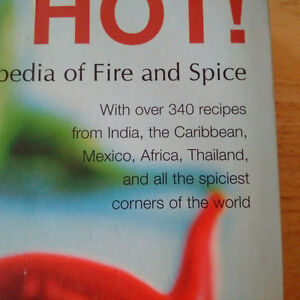 Hot and Spicy Food Cookbooks Like New Kingston Kingston Area image 9