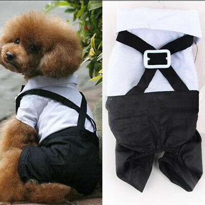 Cat Tuxedo Outfit (Pet Dog Prince Puppy Cat Tuxedo Bow Tie Suit Costume Jumpsuit Outfit Apparel)