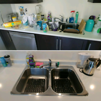 2 LADIES WILL CLEAN YOUR HOUSE IN DETAILS-OAK-BRL
