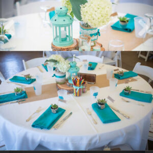 Wedding Decor: Teal-Mint-Rustic themed assorted items