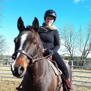 Horse Riding Lessons at Raspberry Ridge
