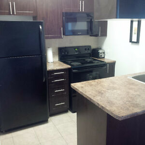 DOWNTOWN 1 BEDROOM CONDO-AVAILABLE JUNE 1ST-AMAZING DEAL