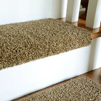 Need carpet or flooring?