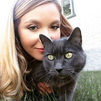 Flight attendant and cat relocating to Vancouver!!