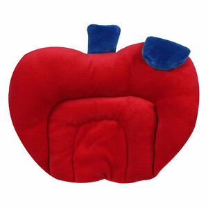 Mustard Seeds Rai Baby Pillows