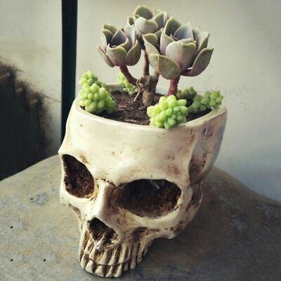 1 pcs Resin Skull Head Design Flower Planter Pot Container Home Bar Decoration