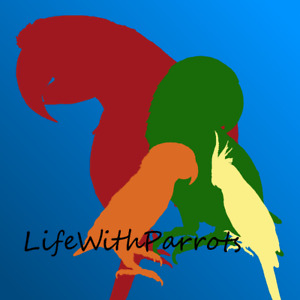 LifeWithParrots - Boarding • Grooming • Training